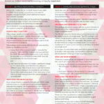 SMSF-Borrowing-Arrangements-Flyer-1